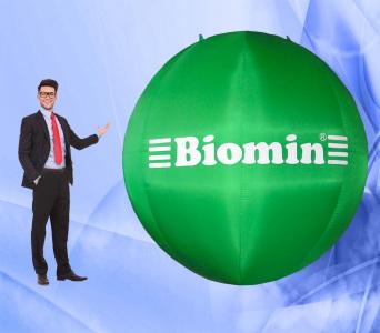 Пневмофигура Сфера Biomin